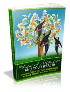 the law of attraction and wealth