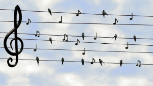 music and the law of attraction